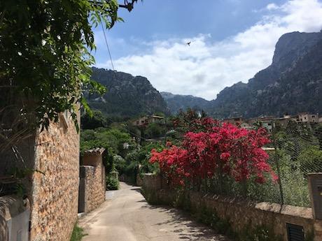 Feel home in Mallorca  /  Feng Shui Beratungen ab sofort auch auf Mallorca